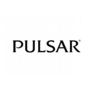 Correa de reloj Pulsar 70P8JG / Y182 6d40 Acero Acero